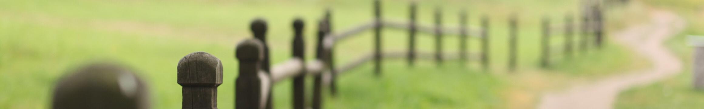 Rural 01