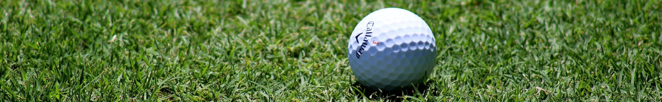 Golf 04