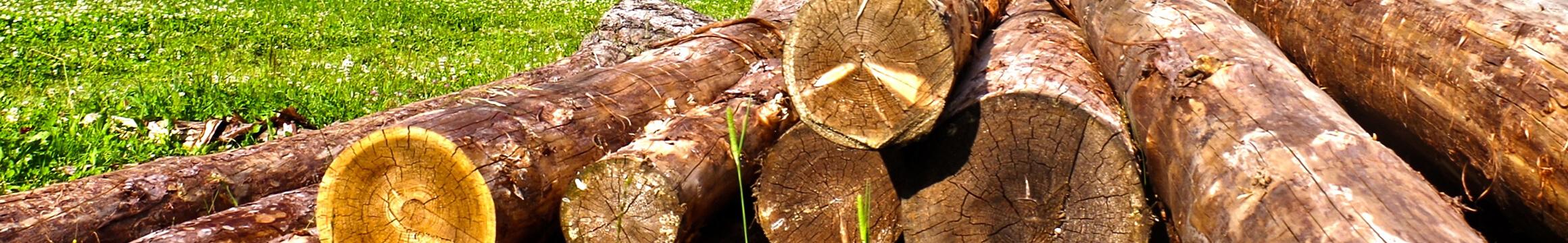 Wood Rustic 02