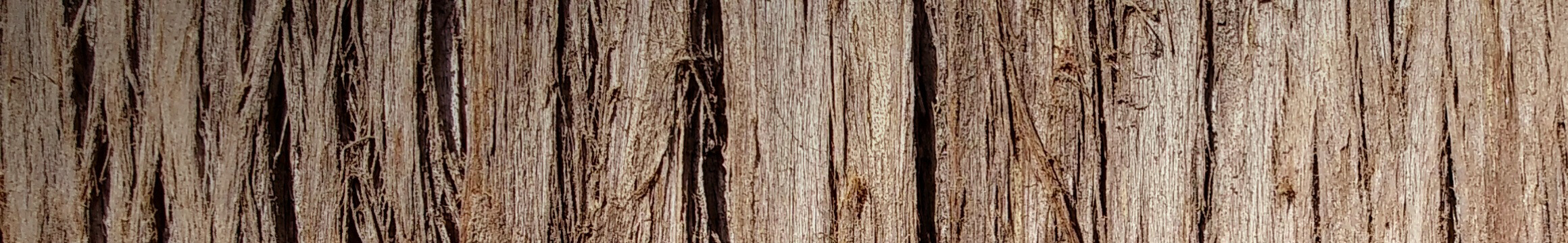 Wood Rustic 06
