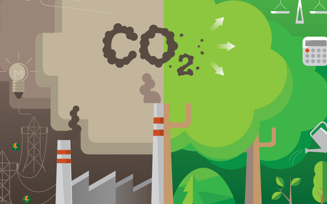 How important is it to reduce Carbon Footprint? Role of CTC Global in this.