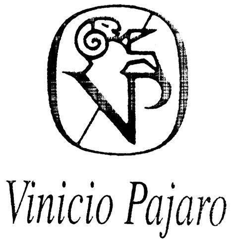 VP Vinicio Pajaro