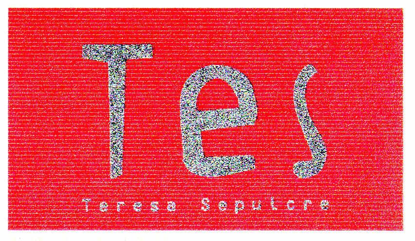 Tes Teresa Sepulcre