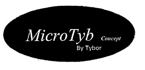MicroTyb Concept By Tybor