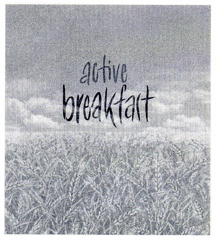 active breakfast