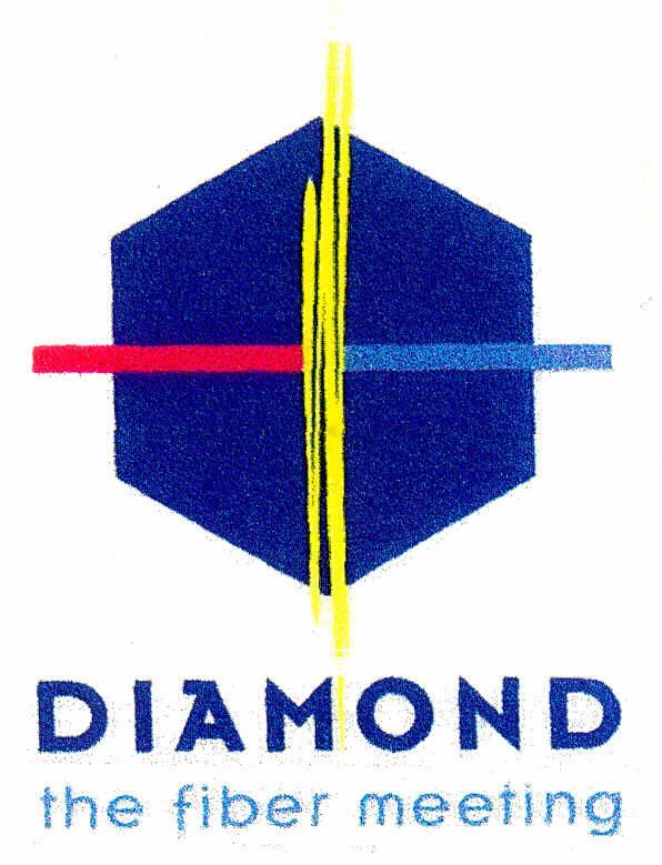 DIAMOND the fiber meeting