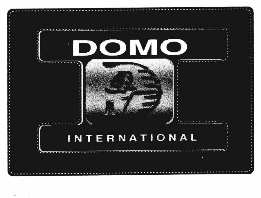 DOMO INTERNATIONAL