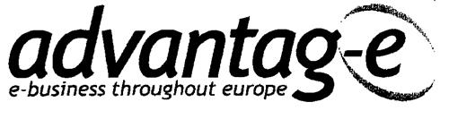 advantag-e e-business throughout europe