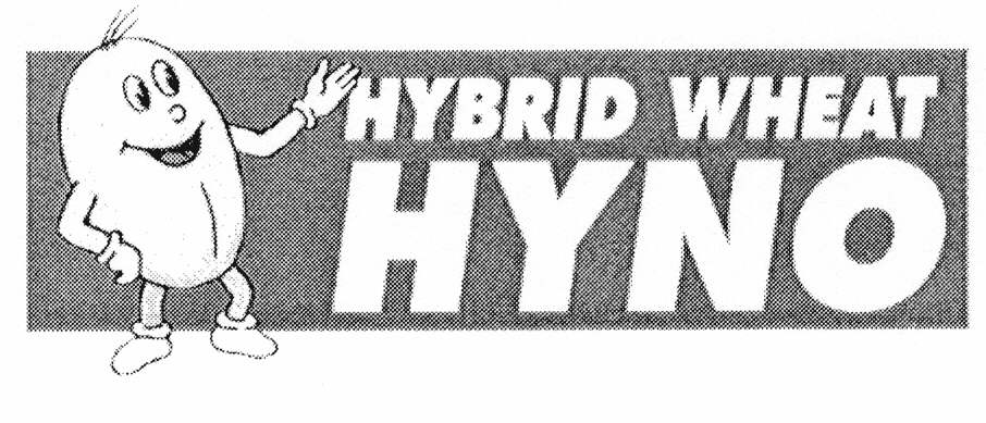 HYBRID WHEAT HYNO