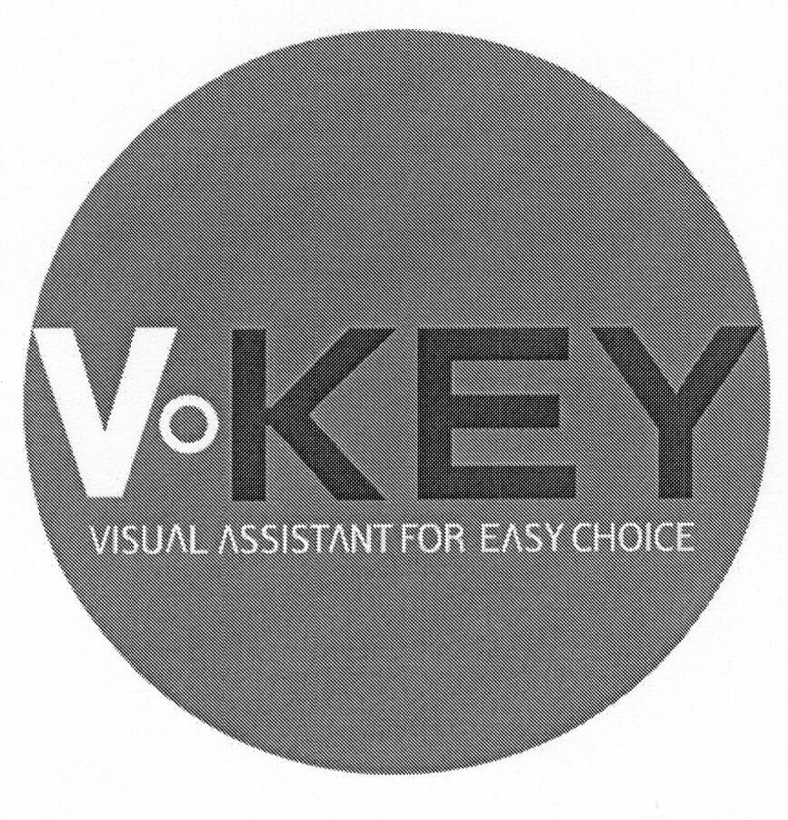 V·KEY VISUAL ASSISTANT FOR EASY CHOICE