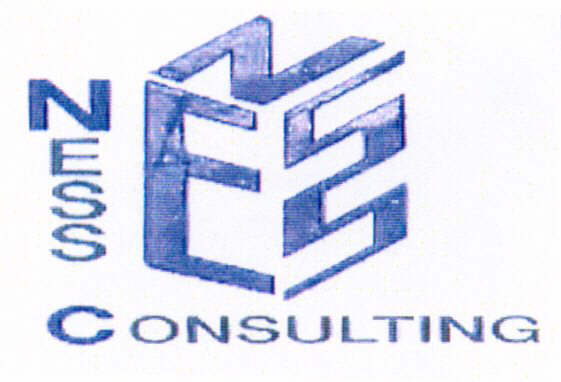 NESS NESS CONSULTING