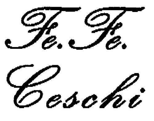 Fe.Fe. Ceschi