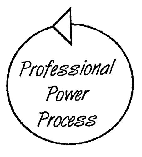 Professional Power Process