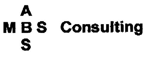 MBS ABS Consulting