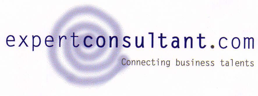 expertconsultant.com Connecting business talents