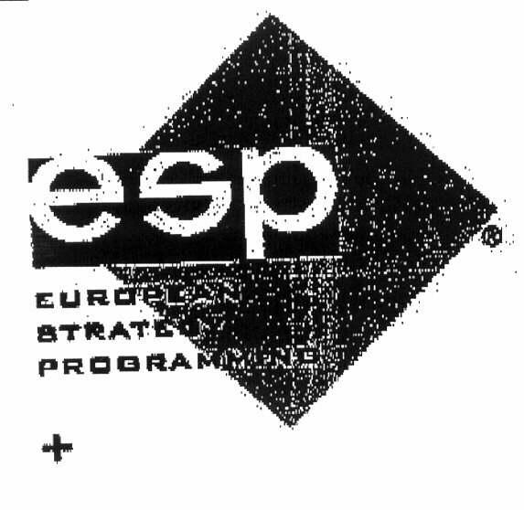 esp EUROPEAN STRATEGY PROGRAMMING