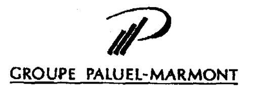 P GROUPE PALUEL-MARMONT
