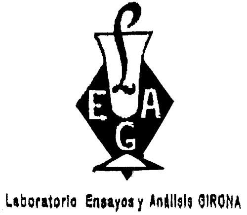 LEAG Laboratorio Ensayos y Análisis GIRONA
