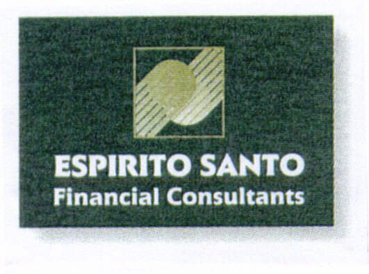 ESPIRITO SANTO Financial Consultants