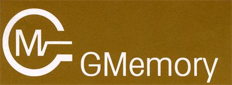 MG GMemory