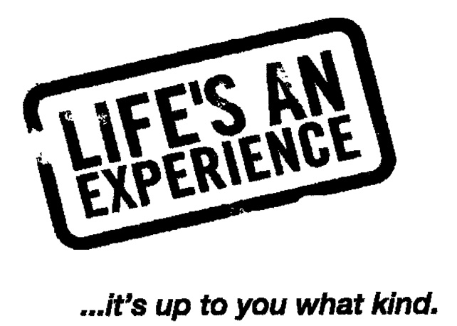 LIFE'S AN EXPERIENCE ...it's up to you what kind.