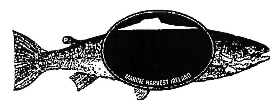 MARINE HARVEST IRELAND