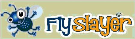 Flyslayer