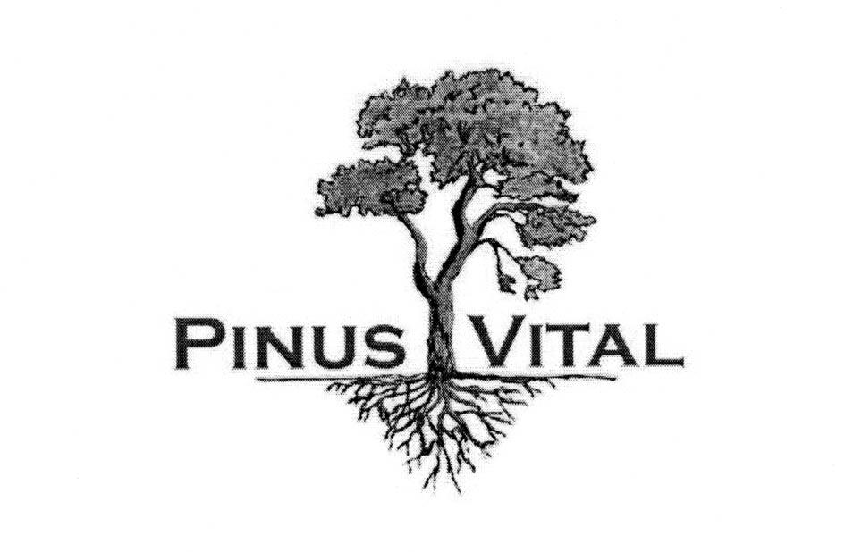 PINUS VITAL