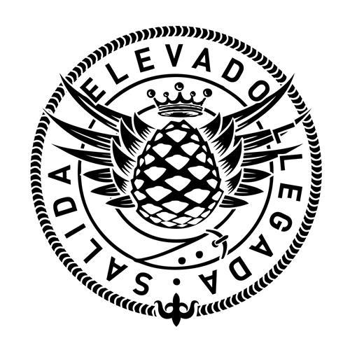 SALIDA ELEVADO LLEGADA