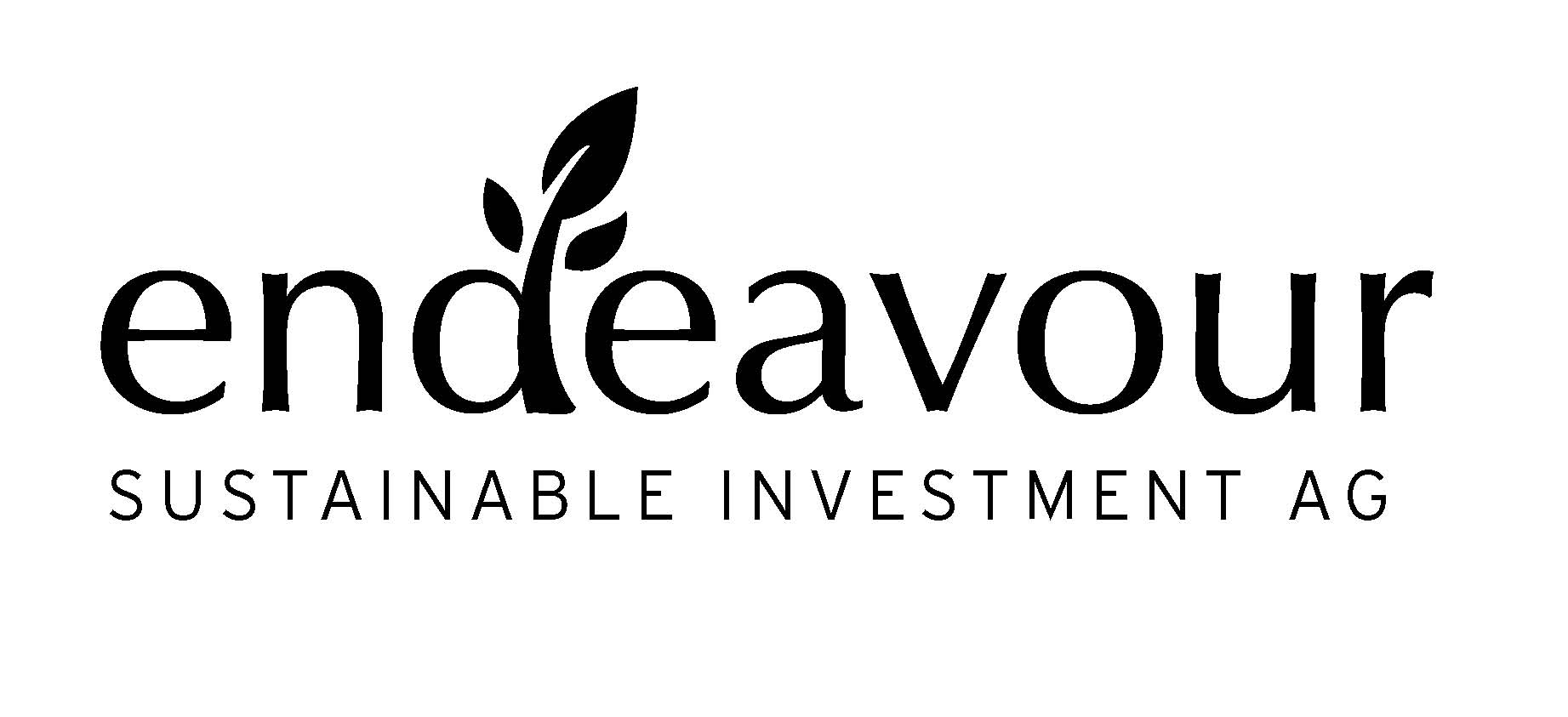 endeavour SUSTAINABLE INVESTMENT AG
