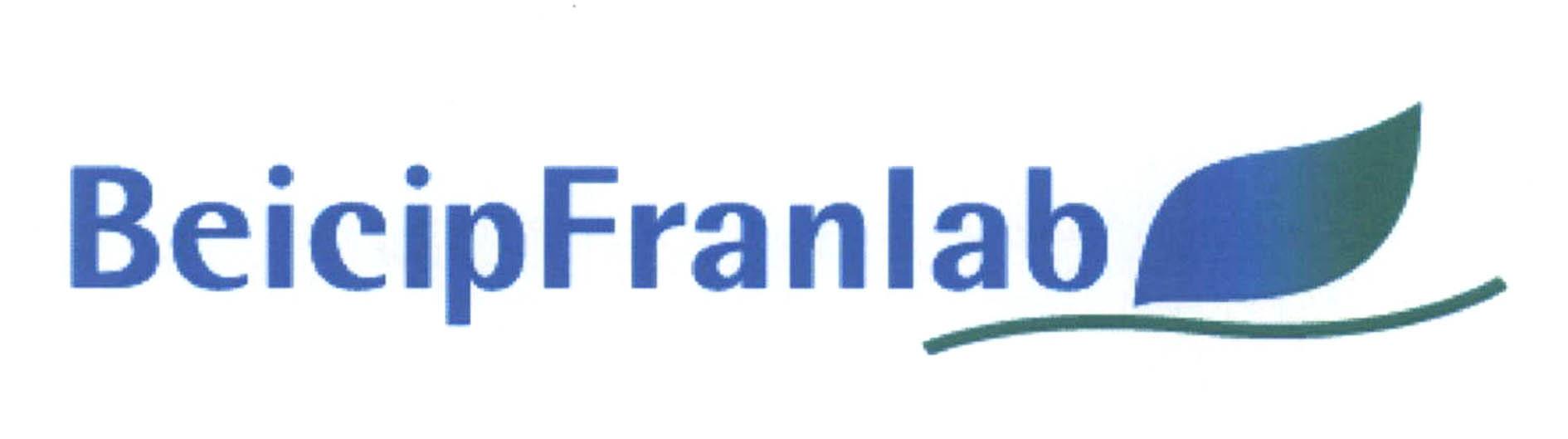 BeicipFranlab