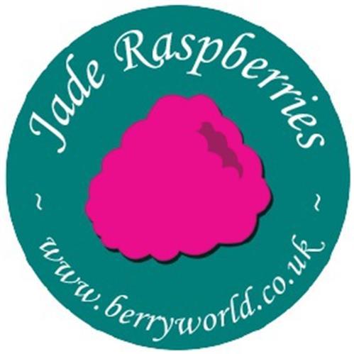 JADE RASPBERRIES WWW.BERRYWORLD.CO.UK