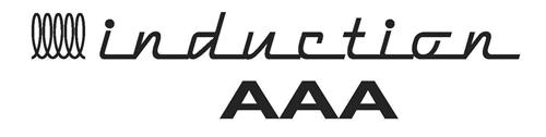 Induction  AAA