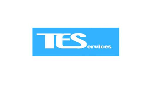 TEServices
