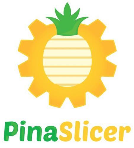 PINASLICER