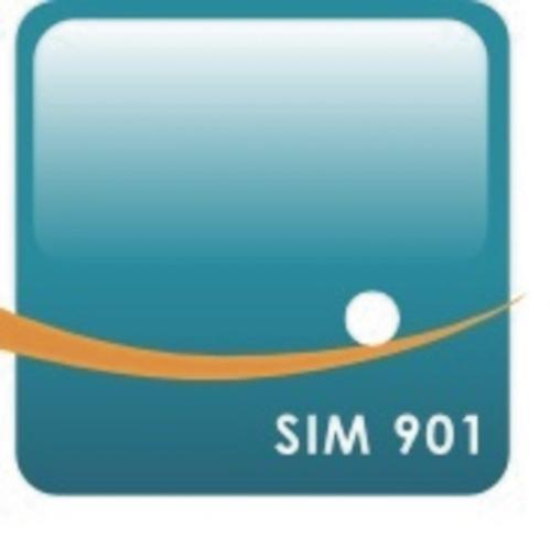 SIM 901