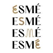 Esmé hiring Server in Chicago, IL