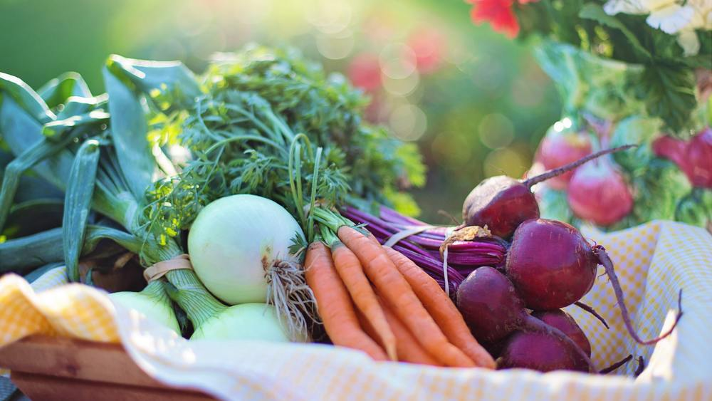 Chef Tips for Seasonal Menu Changes