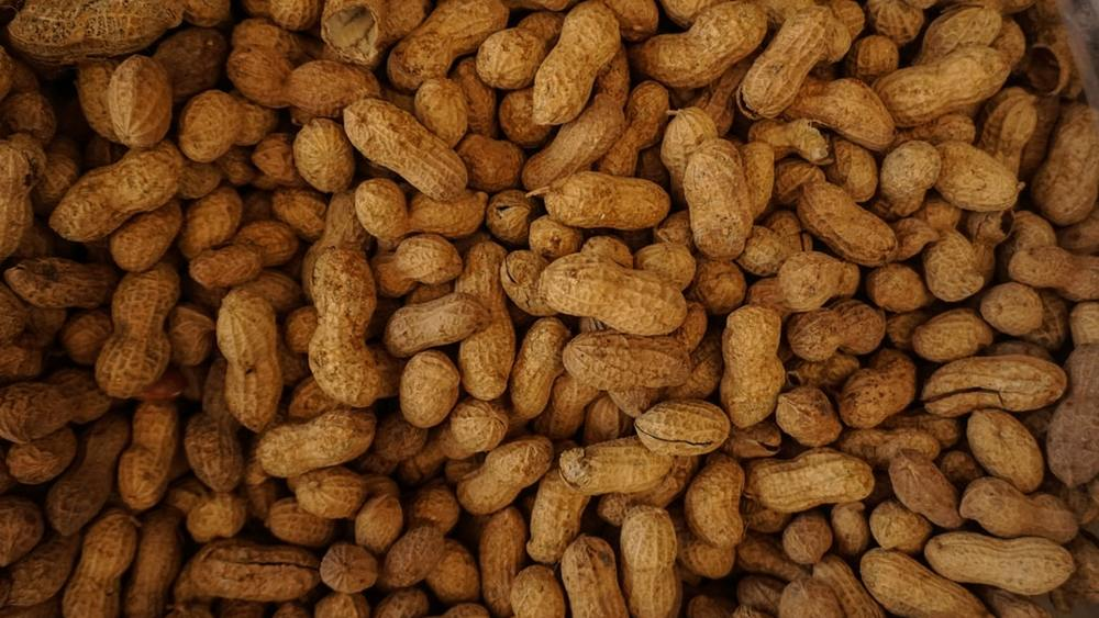 Food Allergies: Restaurant Operations Protocol