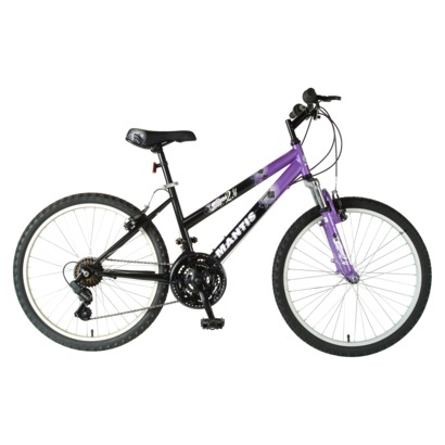 Large Adult Bicycle