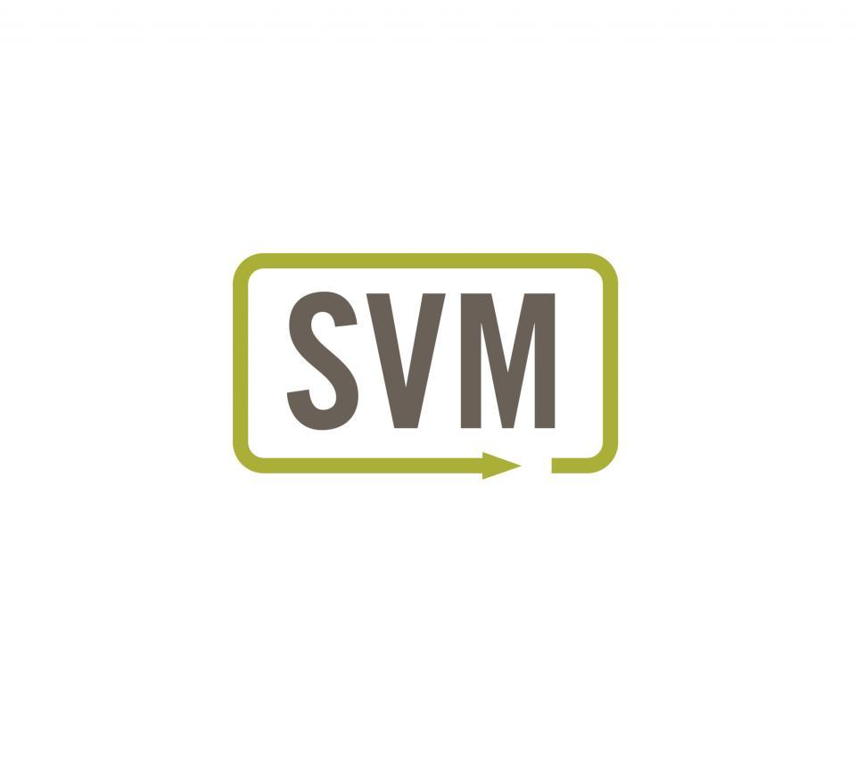 SVM, LP