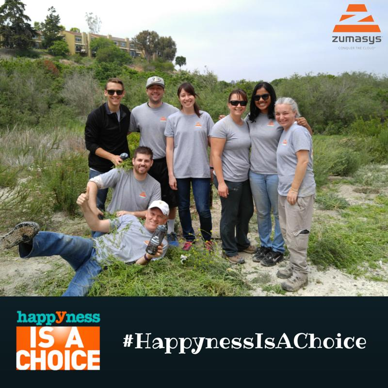 Zumasys Project Management Team Volunteering Newport Bay Habitat Restoration