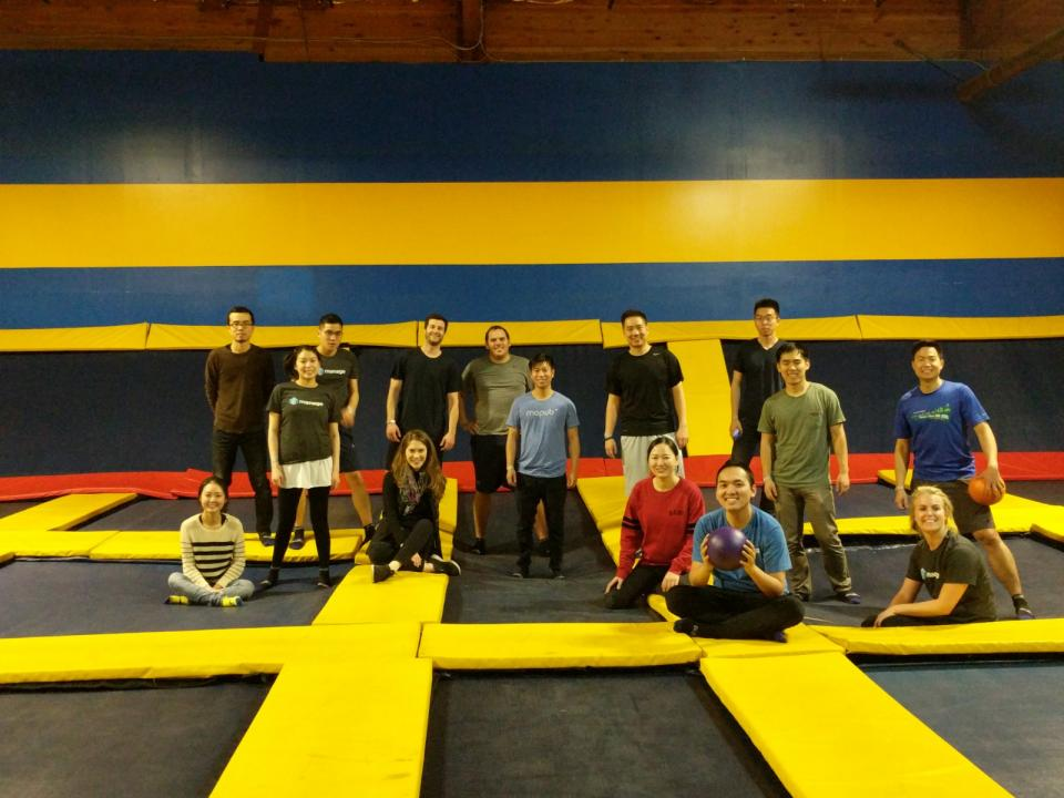 Team Trampoline Dodge ball