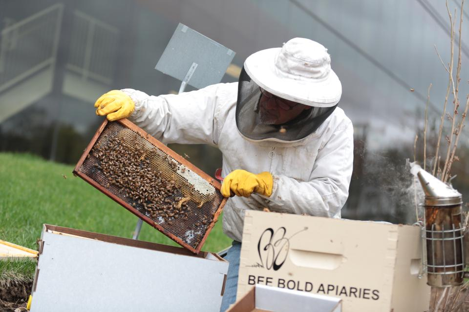 Bee-ing environmentally sensitive – Realogy shares its Madison, New Jersey headquarters with thousands of honeybees who were brought in to help pollinate the local flora. It's part of a comprehensive program to reduce greenhouse gases and slow climate change.