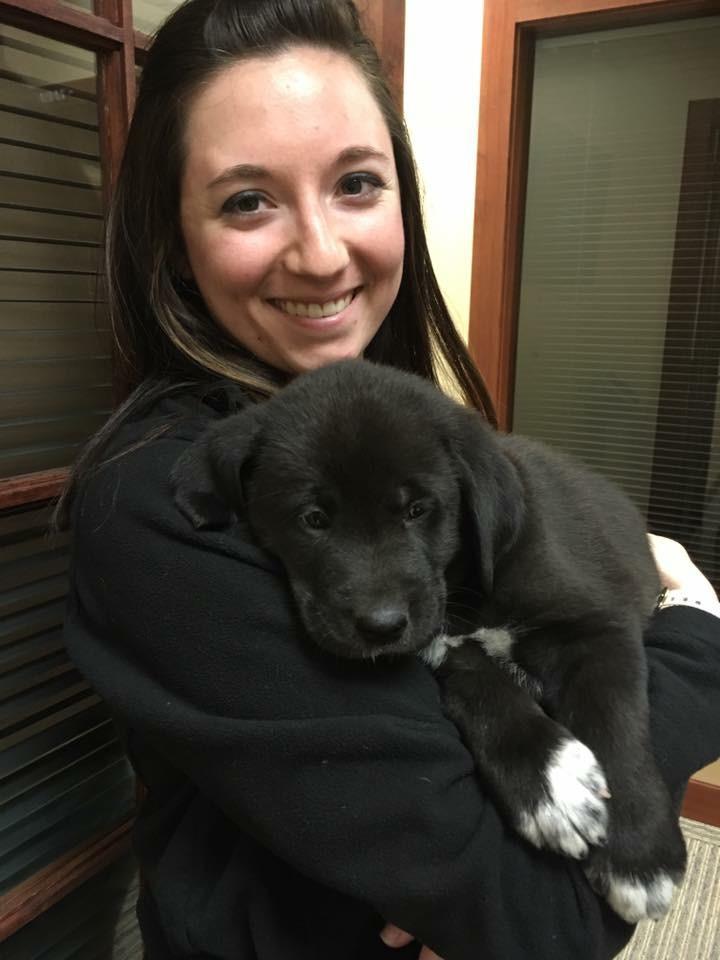 Puppies Visit!