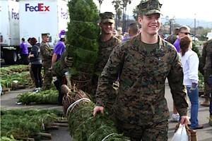 FedExCares_Trees-for-Troops-2015