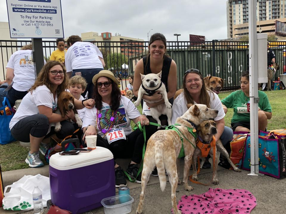 Cirrus Logic's team has a dog-gone good time at the Mighty Texas Dog Walk, a fundraiser that helps to turn rescue dogs into service animals.
