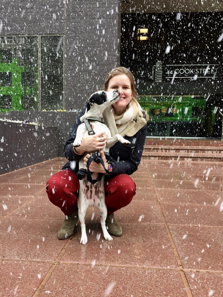 A team member weathers the storm with our office dog, Louis!