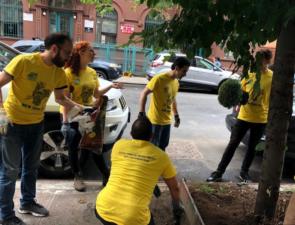 Volunteering with Citizens Committee NYC