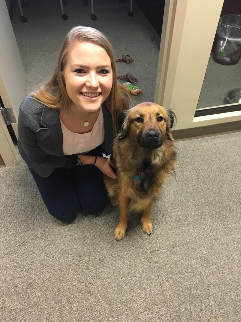 Tribridge Take Your Dog to Work